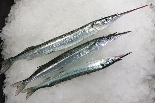 Fresh Garfish L