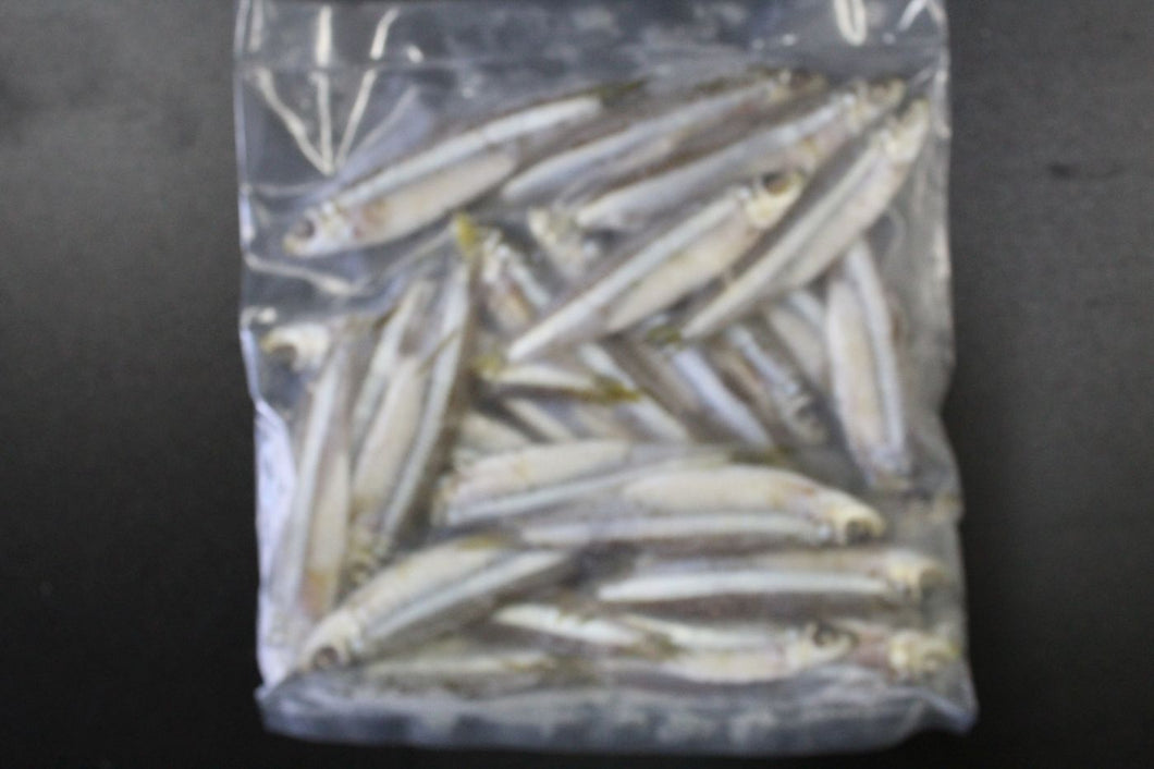 CBT Salted White Bait