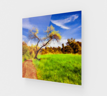 "Load image into Gallery viewer, ""The Path that Lies Ahead"" Fine Art Acrylic Print"