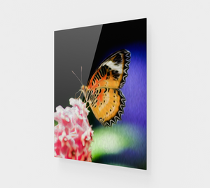 """Malay Lacewing Butterfly I"" Fine Art Acrylic Print"