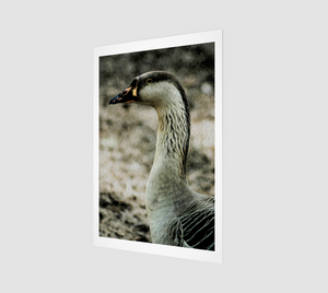 """My Good Side"" Fine Art Print"