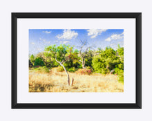 "Load image into Gallery viewer, ""A Place of Serenity 3"" Matted Fine Art Print"