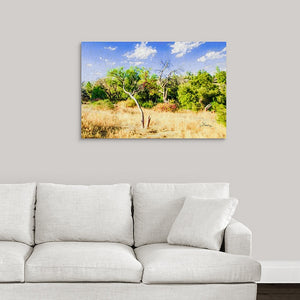 """A Place of Serenity 3"" Fine Art Metal Print"