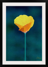 "Load image into Gallery viewer, ""California Poppy 1"" Framed Fine Art Expression"