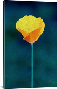 """California Poppy 1"" Fine Art Canvas"