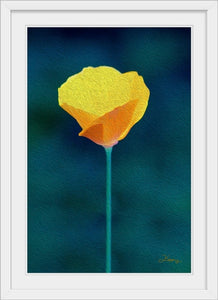 """California Poppy 1"" Framed Fine Art Expression"