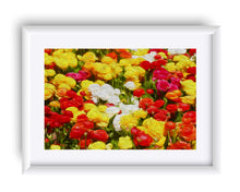 "Load image into Gallery viewer, ""Flowers Galore"" Matted Fine Art Print"