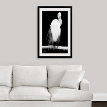 "Load image into Gallery viewer, ""Great Egret in Full Bloom 2"" Framed Fine Art Expression"