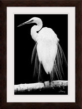 "Load image into Gallery viewer, ""Great Egret in Full Bloom 1 - R"" Framed Fine Art Expression"