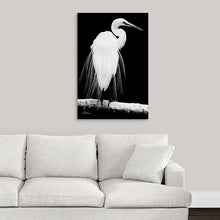 "Load image into Gallery viewer, ""Great Egret in Full Bloom 1 - L"" Fine Art Metal Print"