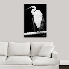 "Load image into Gallery viewer, ""Great Egret in Full Bloom 1 - R"" Fine Art Acrylic"
