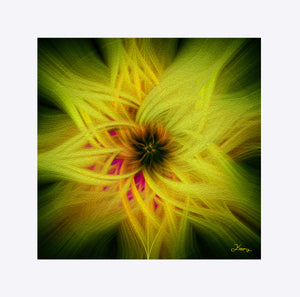 """Magnificent Wonder 3"" Matted Fine Art Print"