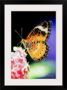 """Malay Lacewing Butterfly 1"" Framed Fine Art Expression"