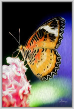 "Load image into Gallery viewer, ""Malay Lacewing Butterfly 1"" Fine Art Canvas"