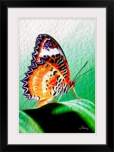 """Malay Lacewing Butterfly 2"" Framed Fine Art Expression"