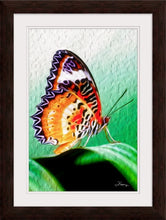 "Load image into Gallery viewer, ""Malay Lacewing Butterfly 2"" Framed Fine Art Expression"