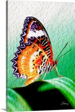 "Load image into Gallery viewer, ""Malay Lacewing Butterfly 2"" Fine Art Canvas"