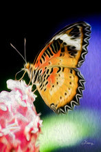 "Load image into Gallery viewer, ""Malay Lacewing Butterfly 1"" Fine Art Metal Print"