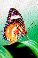 "Load image into Gallery viewer, ""Malay Lacewing Butterfly 2"" Fine Art Acrylic"
