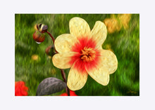 "Load image into Gallery viewer, ""Morning Dew 1"" Matted Fine Art Print"