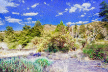 "Load image into Gallery viewer, ""A Place of Serenity 2"" Fine Art Metal Print"