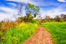 "Load image into Gallery viewer, ""The Path That Lies Ahead"" Fine Art Metal Print"