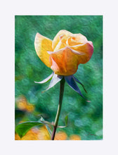 "Load image into Gallery viewer, ""Rosy Prominence 2"" Matted Fine Art Print"