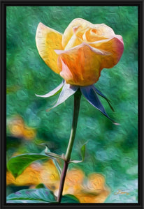 """Rosy Prominence 2"" Fine Art Canvas"