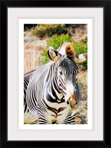 """Zebra 1"" Framed Fine Art Expression"