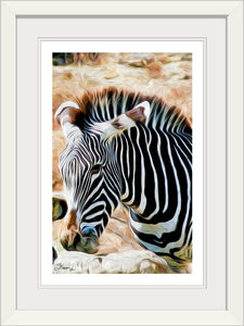 """Zebra 2"" Framed Fine Art Expression"