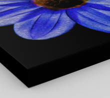 "Load image into Gallery viewer, ""Midnight Blues"" Fine Art Canvas"