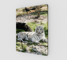 "Load image into Gallery viewer, ""White Tiger At Rest"" L - Fine Art Canvas"