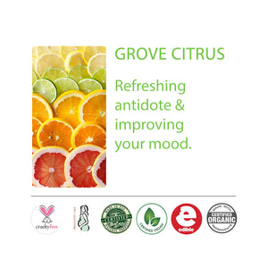 Grove Citrus Set Products