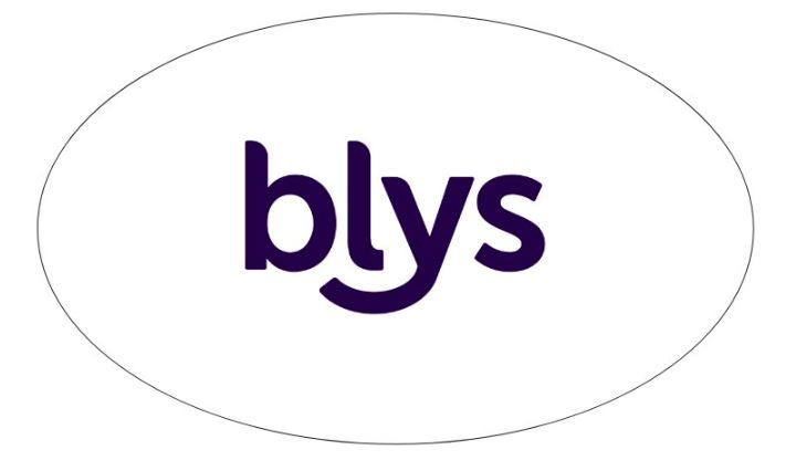 Blys Car Bumper Sticker