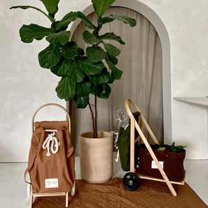 Wandering Sol THE WANDERER Cart Set - Includes Frame, Recycled Canvas Bag & Grande Canvas Shopper