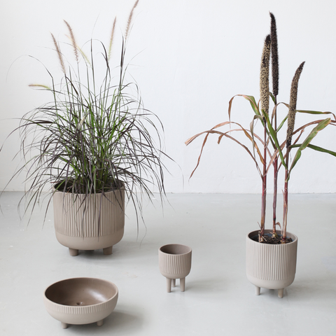 Minimalist Home Decor Items | Kristina Dam Bowls styled with plants | Sculptural Minimalism | Batten Home