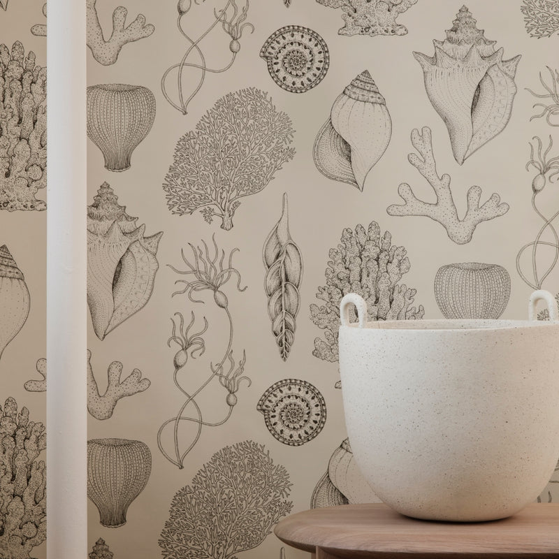 Ferm LivingKatie Scott Shells Wallpaper Off White - Batten Home