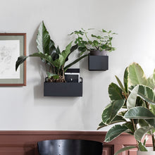Load image into Gallery viewer, Ferm LivingWall Box Rectangle - Batten Home