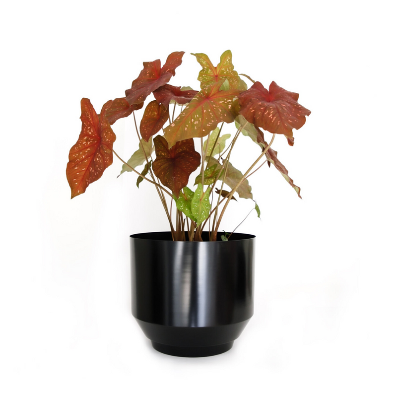 Yield DesignSpun Planter Large - Black - Batten Home