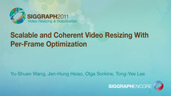 Scalable and Coherent Video Resizing With Per-Frame Optimization