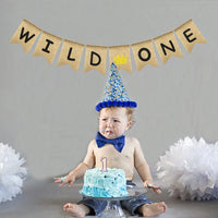 Uniwish Wild One Banner Boy Girl 1st Birthday Party Decorations, Vintage Rustic Burlap Bunting for Baby First Birthday Sign with Glitter Crown