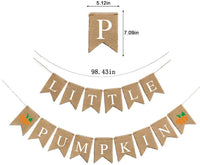 Fall Autumn Baby Shower Decotations Little Pumpkin Banner Jute Burlap Patry Birthday Garland Decoration (Little Pumpkin)