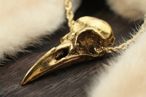 Life Sized Crow Skull 14k Gold Plated