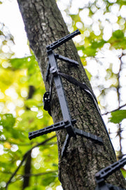 D'Acquisto Series Climbing Sticks