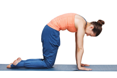 Marjariasana- Yoga The (in)Side Benefits