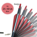 cheap chinese carbon arrows