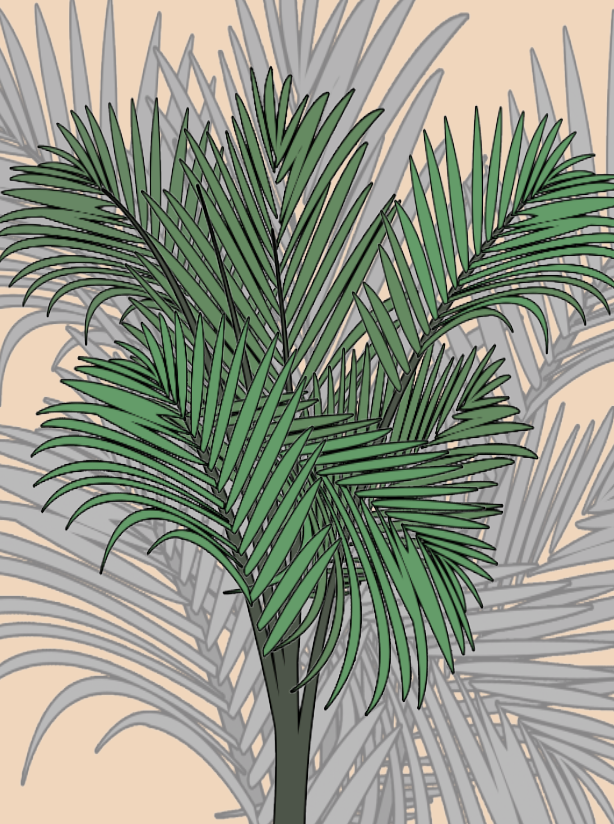 Majesty Palm Plant Care