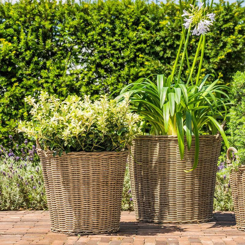 Natural Polyrattan Lined Willow Planter