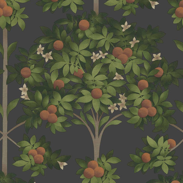 Orange Blossom Wallpaper - Cole & Son