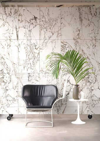 Oversize green plant next to a black chair in front of a white marble wall.